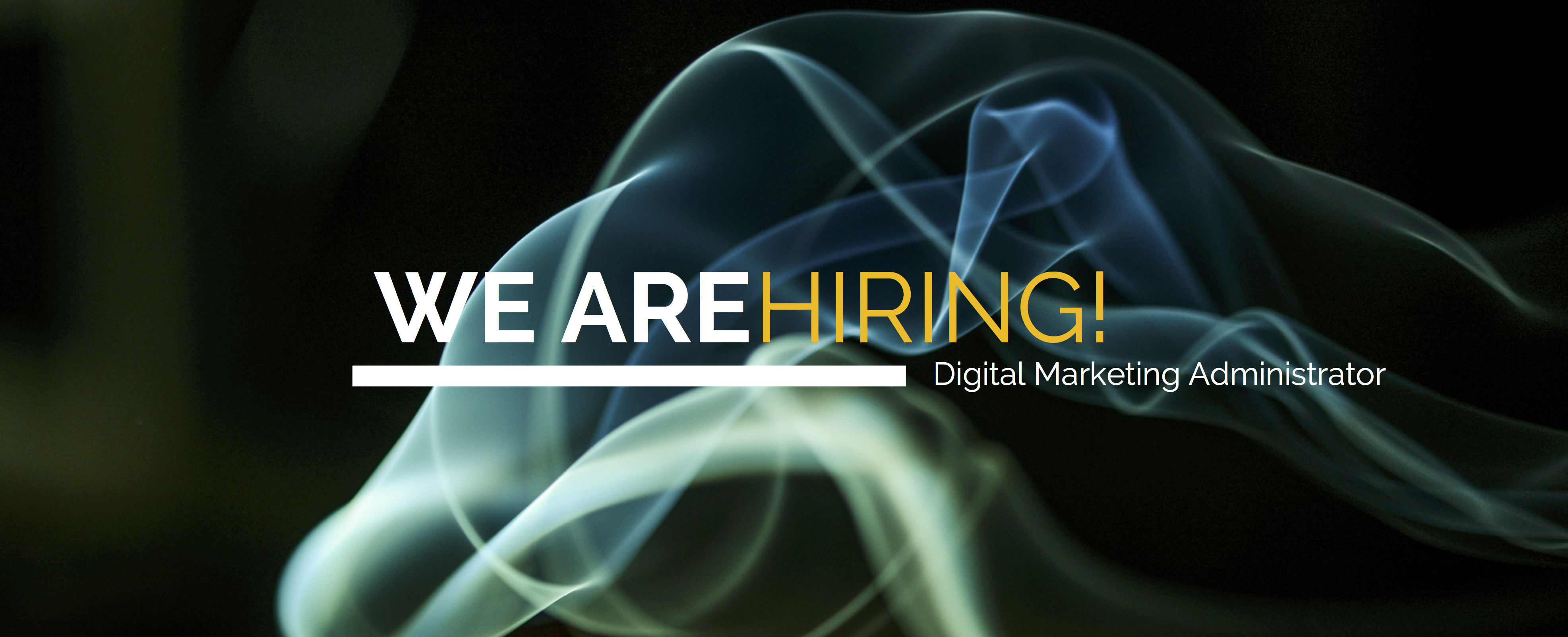 DIGITAL MARKETING JOB DIGITAL 24 NI